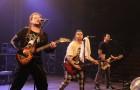 rockovemrazenie